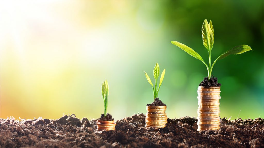 what are esg principles